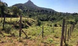 Terreno Na Encantada  - REF: 6695